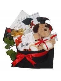 Cadou absolvire colegiu